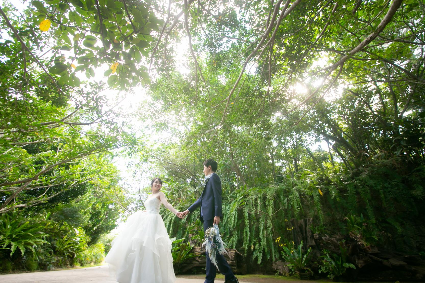 沖縄自然のロケーションフォト フクギ並木、ビオスの丘で写真撮影